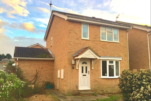 Thumbnail Detached house to rent in Magdalen Close, Eastbourne
