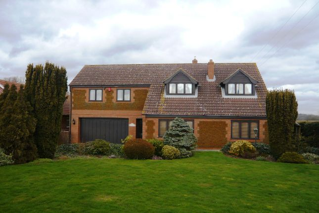 Thumbnail Detached house to rent in Lynn Road, Southery, Downham Market