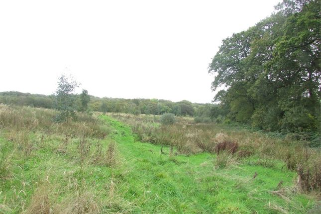 Thumbnail Land for sale in Approximately 17 Acres Of Land, Known As Cae Calon, Landshipping, Narberth, Pembrokeshire