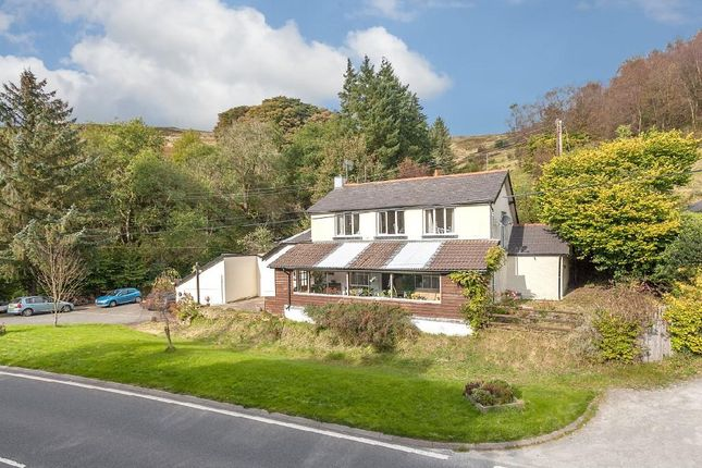 Thumbnail Property for sale in Plynlimon House, Pantmawr, Llanidloes