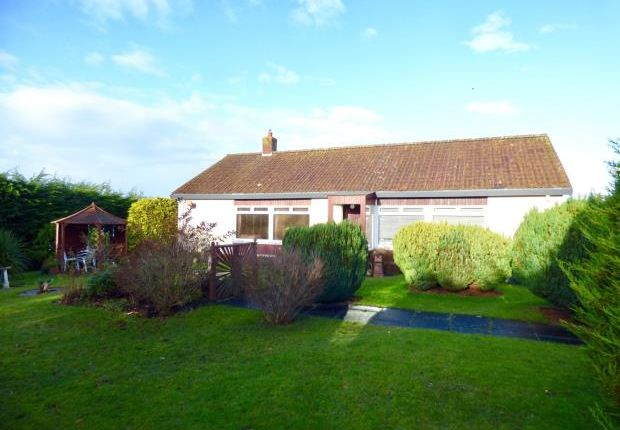 Thumbnail Detached bungalow for sale in Havenrigg, Victory Avenue, Gretna, Dumfries And Galloway