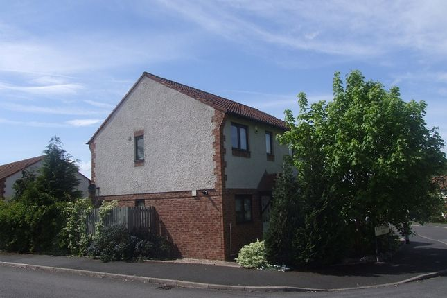 Thumbnail Semi-detached house to rent in St Augusta View, Carlisle