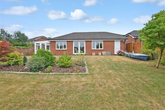 Thumbnail Detached bungalow for sale in Rocks Close, East Malling, West Malling, Kent
