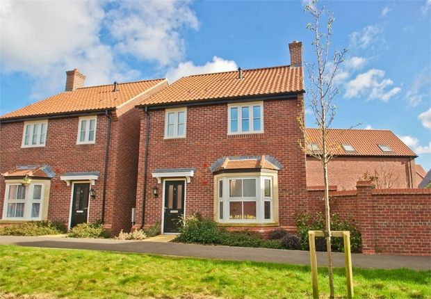 Thumbnail Detached house for sale in Poppy Path, Shepton Mallet