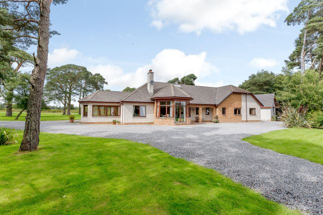 Thumbnail Bungalow for sale in Feabuie, Culloden Moor, Inverness