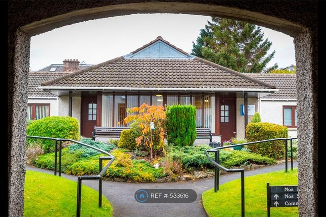 Thumbnail Flat to rent in Bedford Court, Alloa