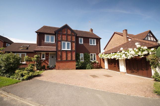 Thumbnail Detached house for sale in Driftway Road, Hook