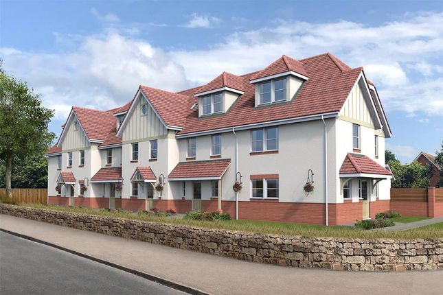 Thumbnail End terrace house for sale in The Avenues, Stevenstone Road, Exmouth, Devon