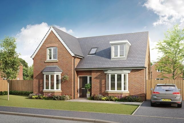 "Thumbnail Detached house for sale in ""Burton"" at The Walk, Withington, Hereford"