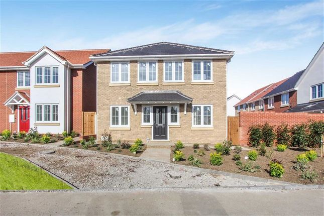 Thumbnail Detached house for sale in The Bull Mews, Everlsey, Essex
