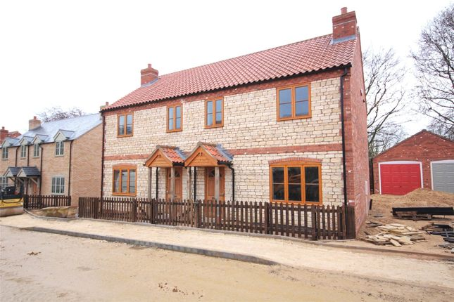 Thumbnail Semi-detached house to rent in Holly Close, Nocton