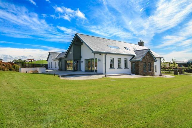 Thumbnail Detached house for sale in 88, Portaferry Road, Newtownards