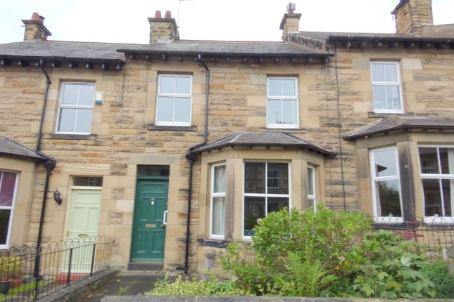 Thumbnail Terraced house for sale in Stott Street, Alnwick