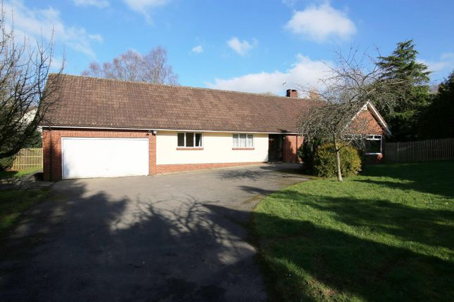 Thumbnail Detached bungalow for sale in Cove, Tiverton