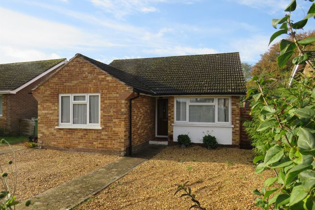 Detached bungalow for sale in St. Matthews Road, Winchester