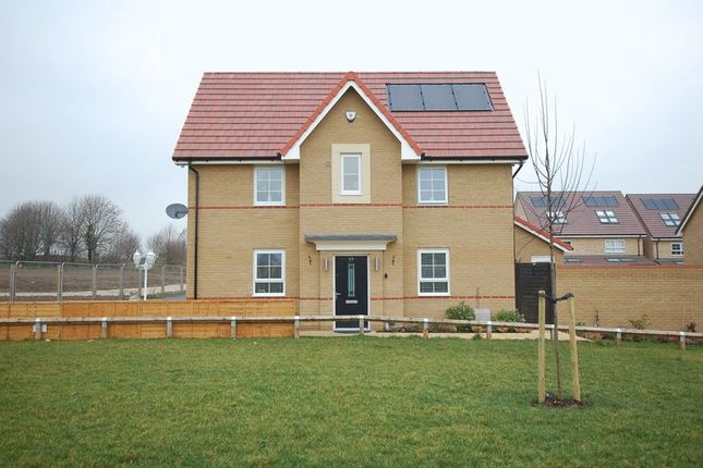 Thumbnail Property for sale in Malvina Close, Lower Dunton Road, Horndon-On-The-Hill, Stanford-Le-Hope