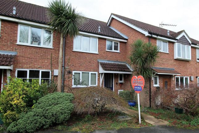 Thumbnail Terraced house for sale in Winterbourne Walk, Frimley