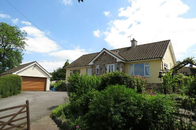 Thumbnail Detached bungalow for sale in Elm Close, Shipham, Winscombe