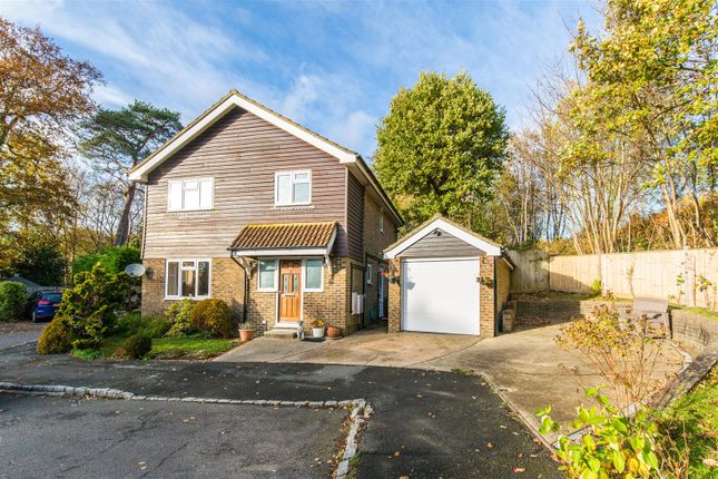 Thumbnail Detached house for sale in Swaines Way, Heathfield