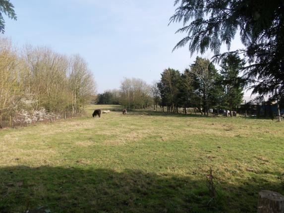 Thumbnail Detached house for sale in Alton, Hampshire