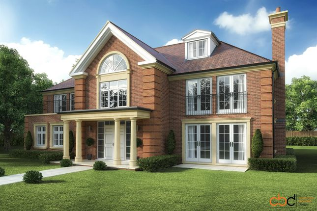 Thumbnail Detached house for sale in Eden Vale, Dormans Park, East Grinstead