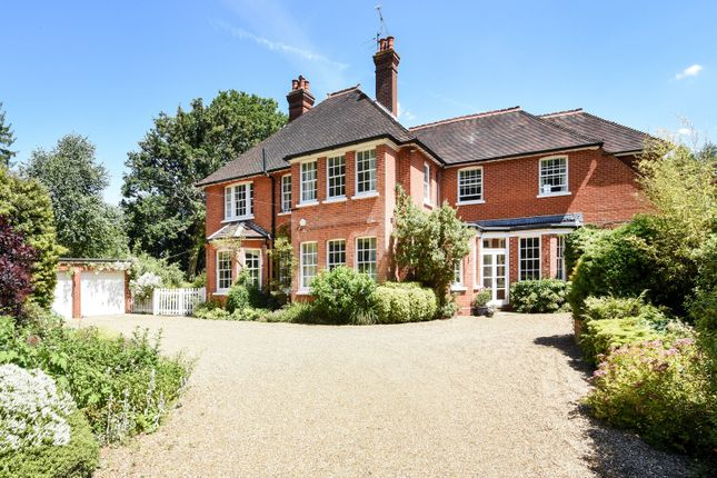 Thumbnail Detached house for sale in Rowe Lane, Pirbright, Woking