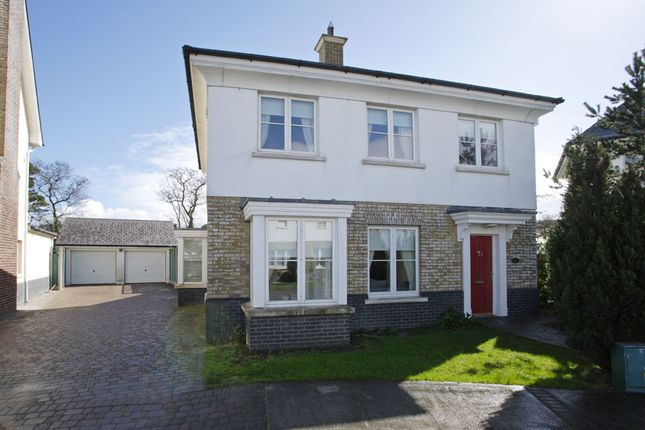 Thumbnail Detached house for sale in Drumnigh Wood, Leinster, Ireland