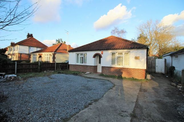 Thumbnail Bungalow to rent in Earlham Green Lane, Norwich