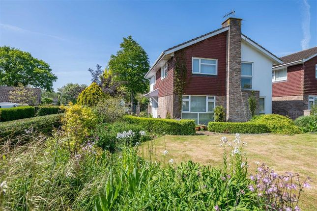 Thumbnail Detached house for sale in The Hawthorns, Raglan, Monmouthshire