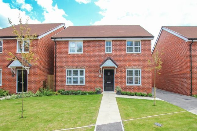 Thumbnail Detached house for sale in Malthouse Way, Worthing