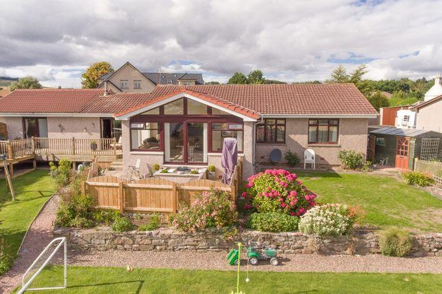 Thumbnail Detached house for sale in Bush, St. Cyrus, Montrose