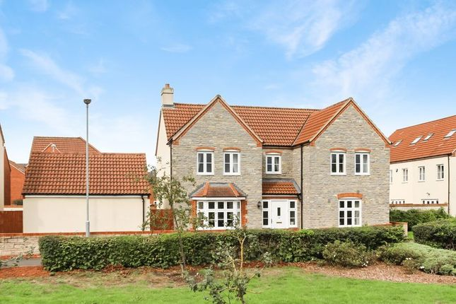 Thumbnail Detached house for sale in Hartlake Close, Glastonbury