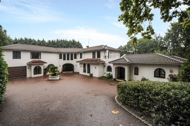 Thumbnail Detached house to rent in East Road, St. Georges Hill, Weybridge