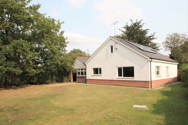 Thumbnail Detached bungalow for sale in Tudwick Road, Tiptree, Colchester