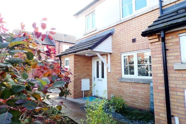 Thumbnail Property to rent in Spring Road, Birmingham