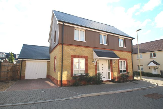 Thumbnail Detached house to rent in Doyle Close, Bedhampton