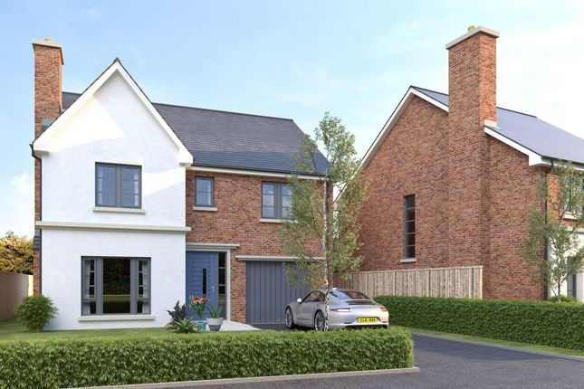 Thumbnail Detached house for sale in Hanover Hill Gardens, Hanover Hill, Bangor