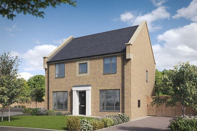 "Thumbnail Detached house for sale in ""The Chedworth "" at Hayfield Way, Bishops Cleeve, Cheltenham"
