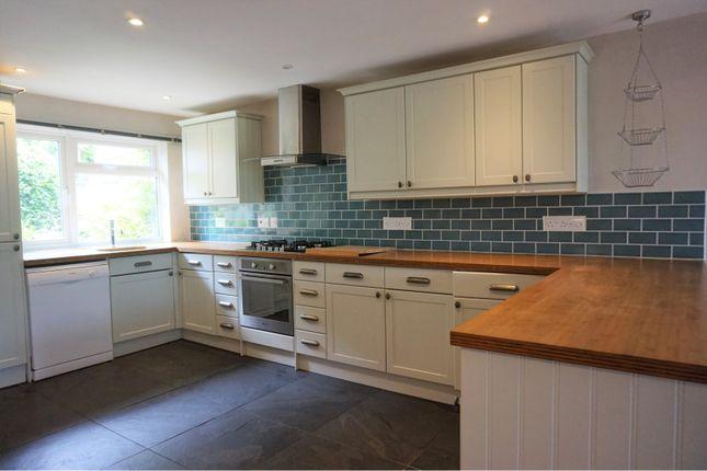 Thumbnail Semi-detached house to rent in Alexandra Road, Bath