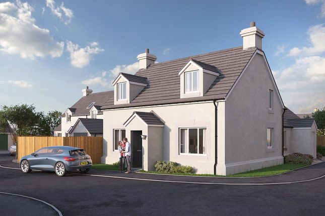 Thumbnail Semi-detached house for sale in Plot No 18, Triplestone Close, Herbrandston, Milford Haven