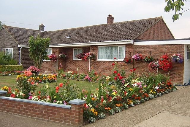 Thumbnail Bungalow for sale in Tabernacle Lane, Forncett Saint Peter