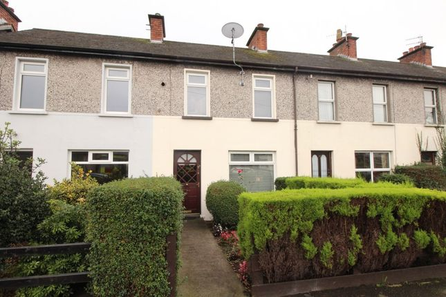 Thumbnail Terraced house for sale in Scrabo Road, Newtownards
