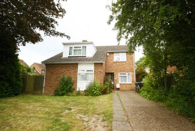 Thumbnail Property to rent in Beaconsfield Road, Canterbury, Kent