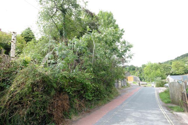 Dscf8455 of New Road, Hangerberry, Lydbrook GL17