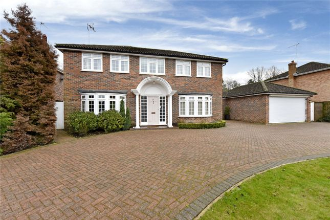 Thumbnail Detached house to rent in The Knoll, Cobham, Surrey