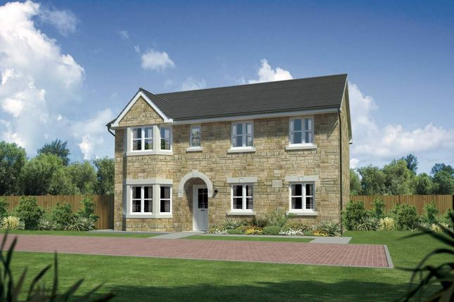 "Thumbnail Detached house for sale in ""Hollandswood"" at Meikle Earnock Road, Hamilton"