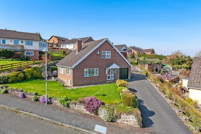 Thumbnail Detached house for sale in The Dingle, Knighton