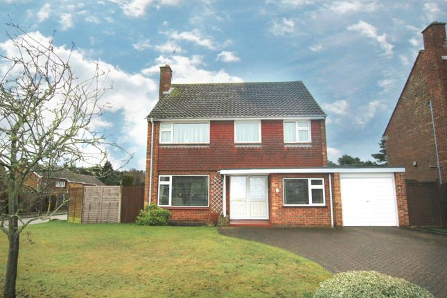 Thumbnail Detached house to rent in Salehurst Road, Ipswich