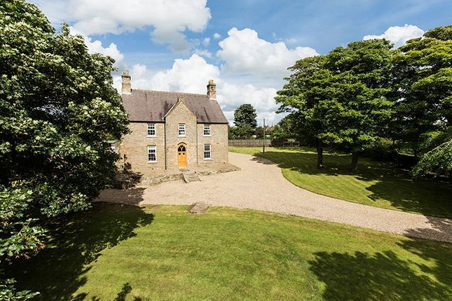 Thumbnail Equestrian property for sale in Grey Gables, Old Quarrington, Durham