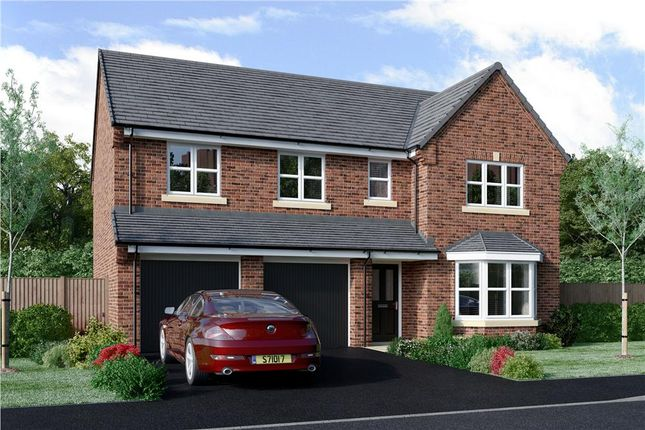"""Thumbnail Detached house for sale in """"Buttermere"""" at Milby, Boroughbridge, York"""